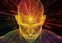 Gimnasia cerebral | Una guía para activar tu mente