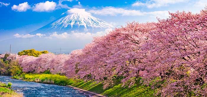 Curiosidades de Japón 6