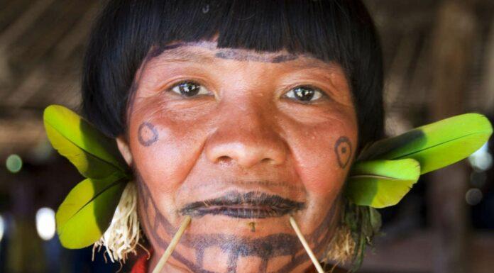 Los Indios Yanomamis
