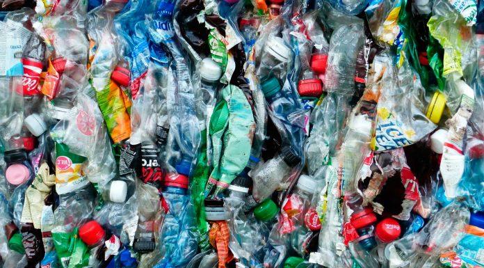 Alternativas al plástico que podrían cambiar el mundo