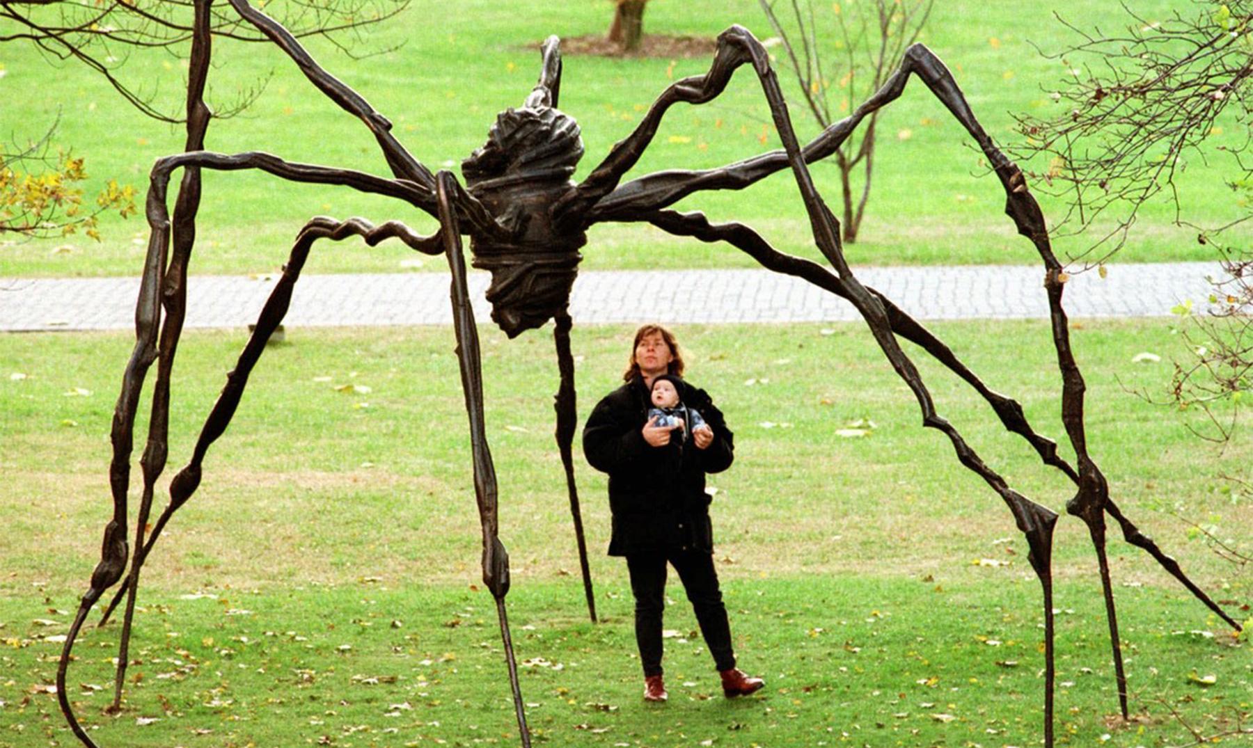 5 arañas gigantes de nuestro planeta | ¡Impresionan!