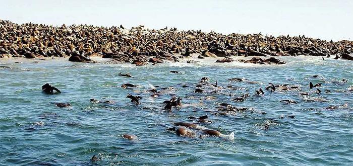 las playas m%C3%A1s peligrosas del mundo 1 1 Estas son las 5 de las playas más peligrosas del mundo