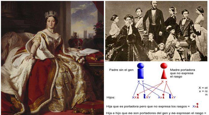 Reina Victoria y hemofilia | ¿Cómo afectó a todos sus descendientes?