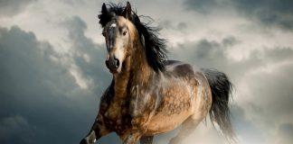 caballos gigantes