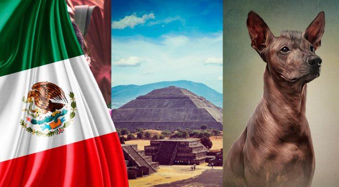 25 Datos Curiosos de México que te asombrarán | Con Imágenes