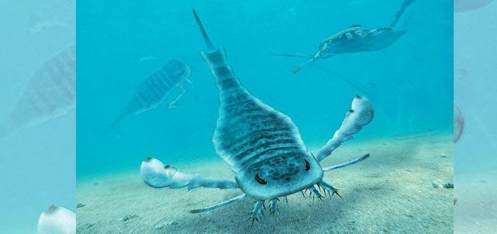 Dinosaurios marinos, Eurypterida