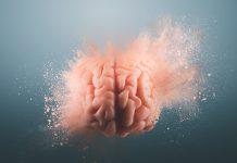 cerebros humanos más extraños