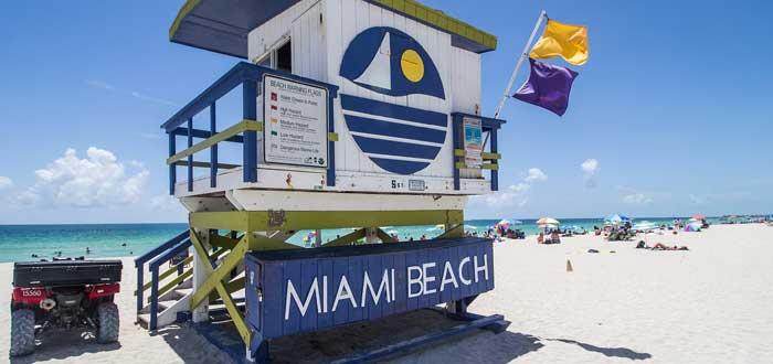 25 Curiosidades de Miami muy soleadas | Con Imágenes