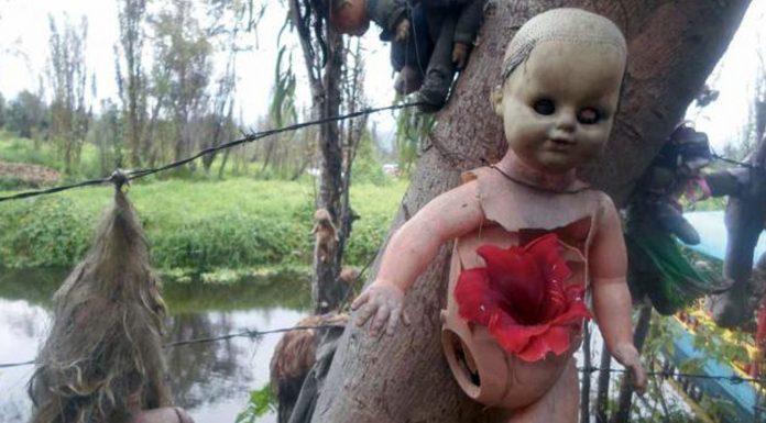 historia de la isla de las muñecas