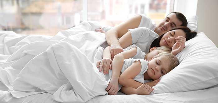 El sueño, diferenciar entre información relevante y ruido