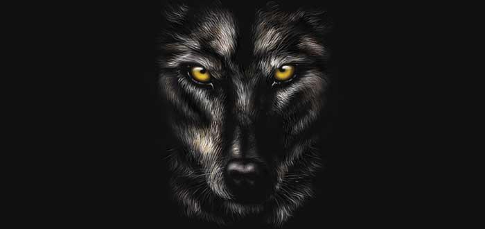 Libros de hombres lobo