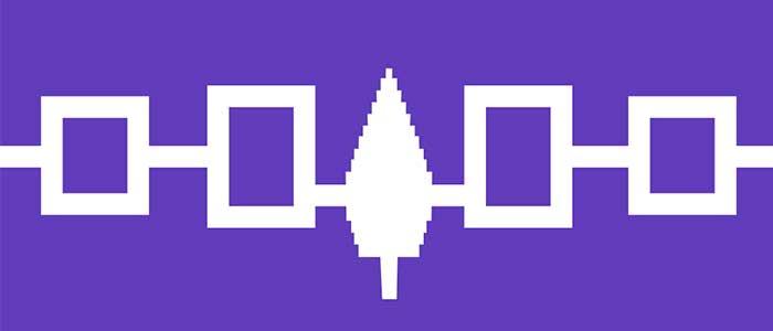 confederacion iroquesa