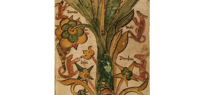 Árbol Yggdrasil