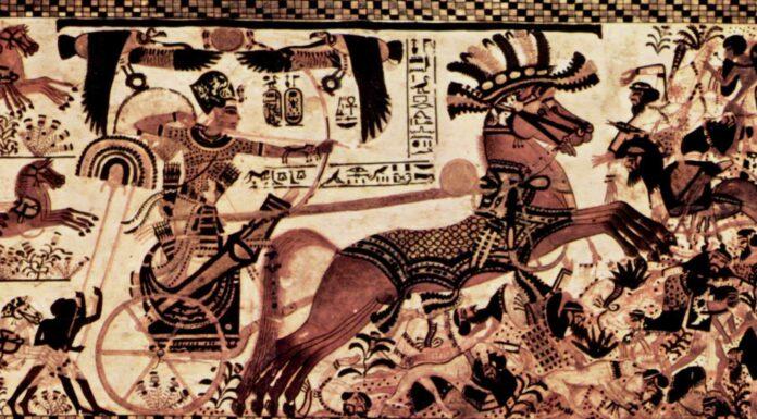 Armadura egipcia