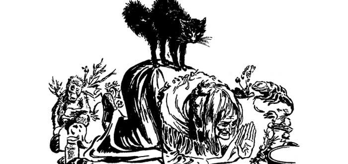 Gatos de Brujas