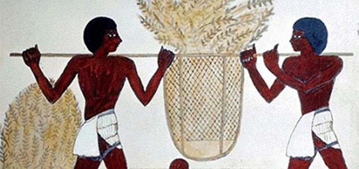 comida egipcia antigua