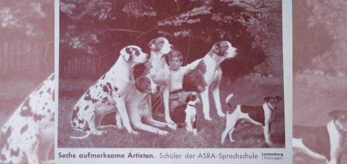 La Hundesprechschule Asra | La escuela para perros parlantes nazis