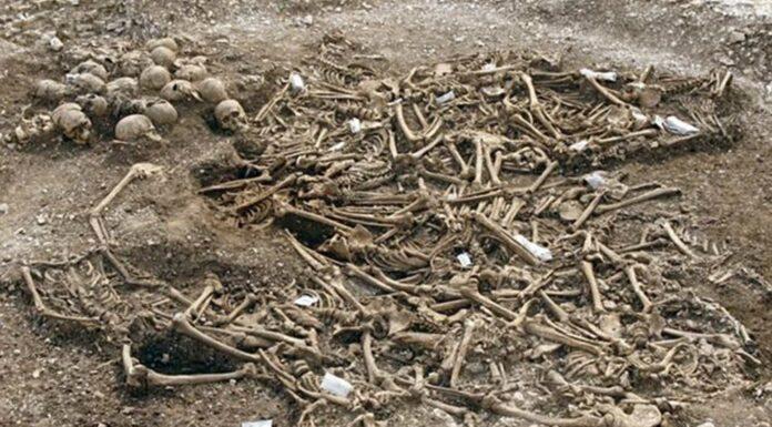 Restos de 50 Vikingos decapitados en Inglaterra | ¿Qué les ocurrió?