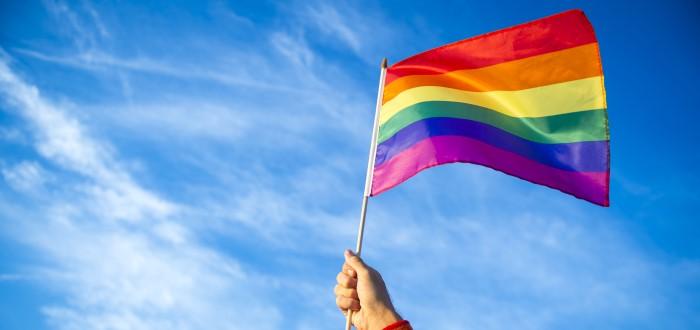 Bandera gay 2