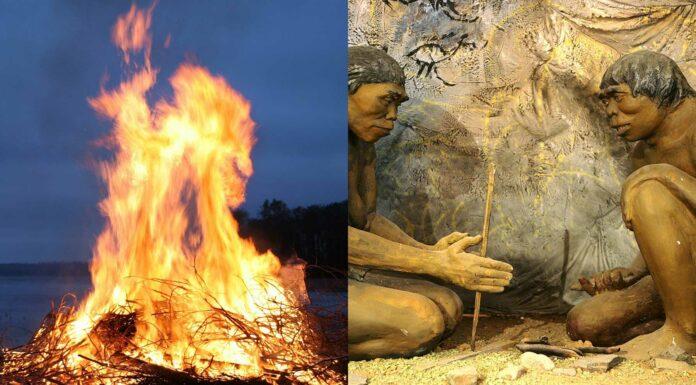 Descubrimiento del Fuego   El Origen del Fuego, Historia y Curiosidades