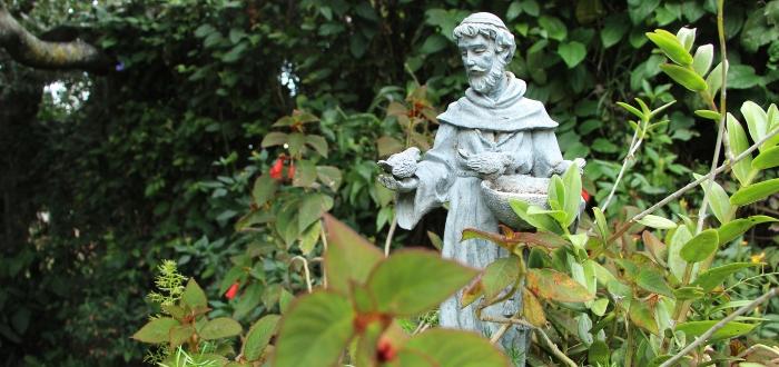 De hombre espiritual a predicador devoto