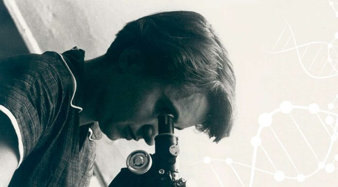 Quién fue Rosalind Franklin   La mujer tras la estructura del ADN 1