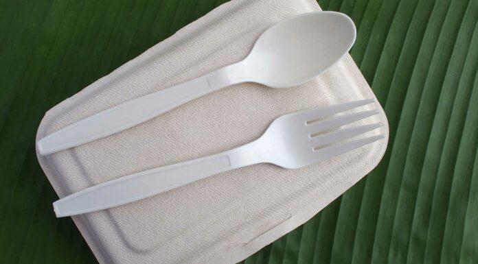 5 Formas de crear Plásticos Biodegradables | Te sorprenderán