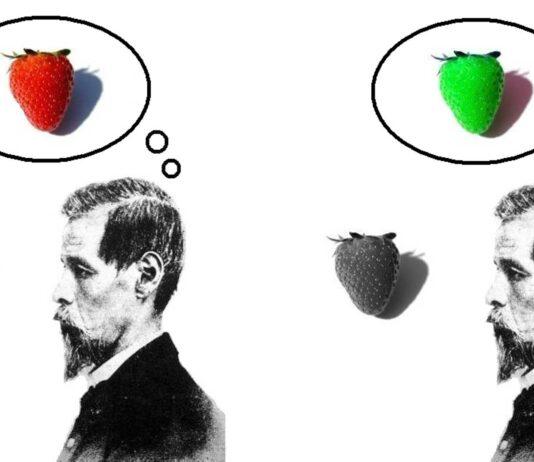 Qualia: la subjetividad de nuestras percepciones | ¿Lo habías pensado?
