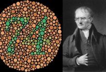 Daltonismo | 10 Curiosidades que quizá desconocías