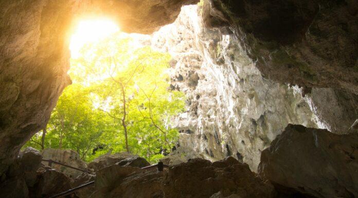 El Mito de la Caverna de Platón | Las Sombras de la Realidad