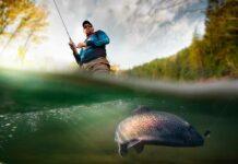 ¿Qué tienen en común la pesca y el marketing digital?