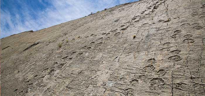 curiosas huellas de dinosaurio en bolivia