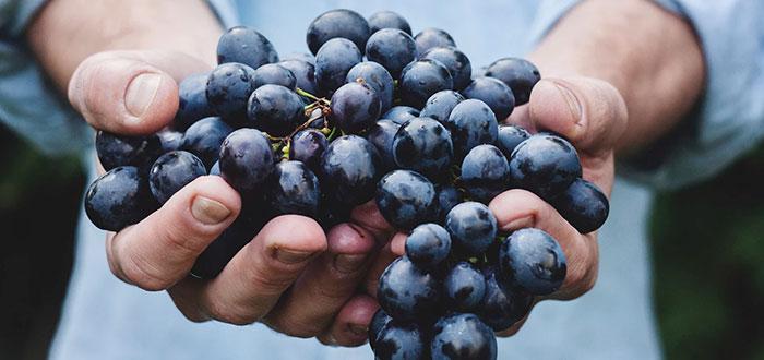 ¿Cómo se elabora el vino sin alcohol? 2