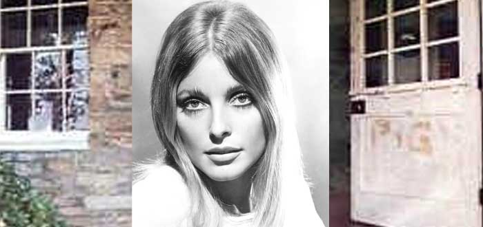 El Asesinato de Sharon Tate | La tragedia que marcó a Hollywood