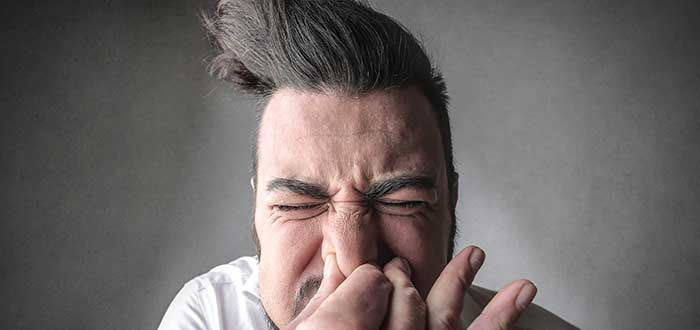 Por qué estornudamos. Cosas que provocan estornudos. 2