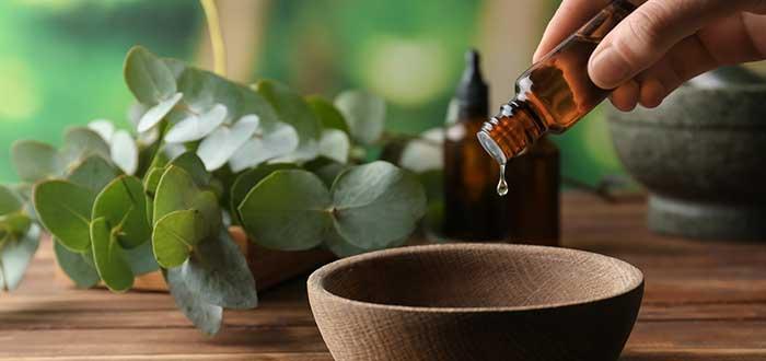 Curiosidades de las plantas medicinales. 2