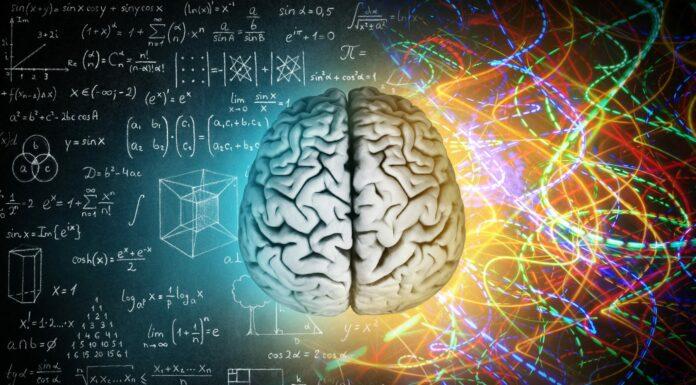 Programación Neurolingüística, Para qué sirve y cómo funciona