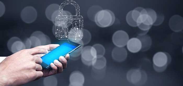 Seguridad Informática qué es y cómo garantizarla. 2