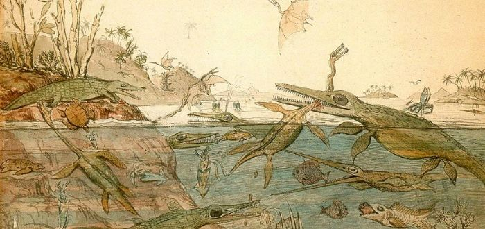 Mary Anning. La primera paleontóloga reconocida..