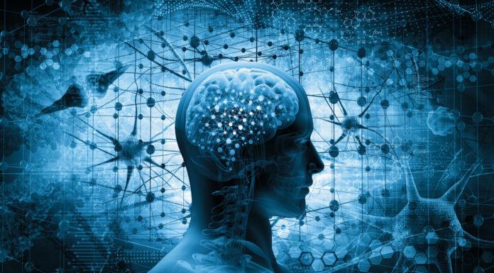 Qué es la neurociencia. Cómo se comporta nuestra mente