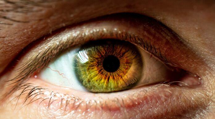 Qué determina el color de los ojos, Descúbrelo