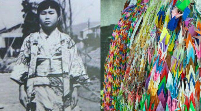 Sadako Sasaki, la niña de Hiroshima y las grullas de la paz