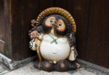 Tanuki japonés, El curioso perro mapache de la fortuna