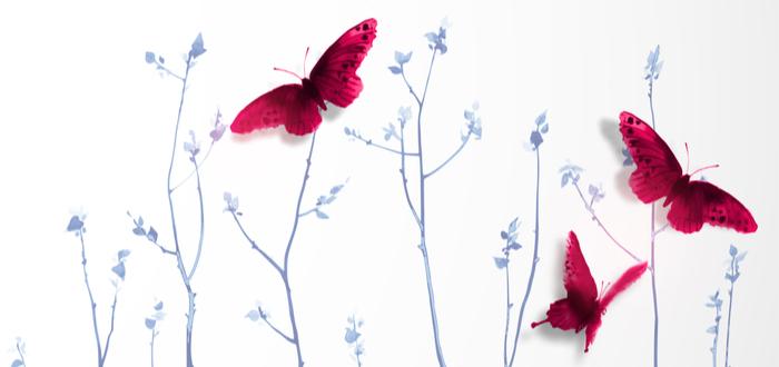 Símbolos Japoneses. Los amuletos de la mitología japonesa. Mariposa Japonesa