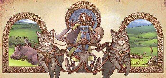 los gatos de freya