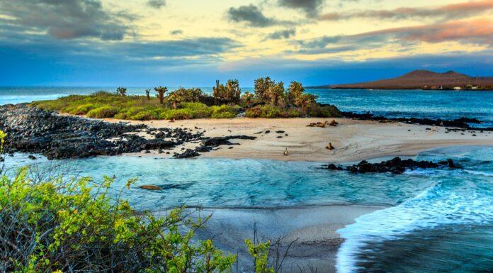 Cómo se forman las islas, un fenómeno soprendente