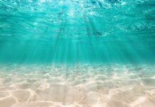 ¿Por qué el mar es azul? | la respuesta te sorprenderá