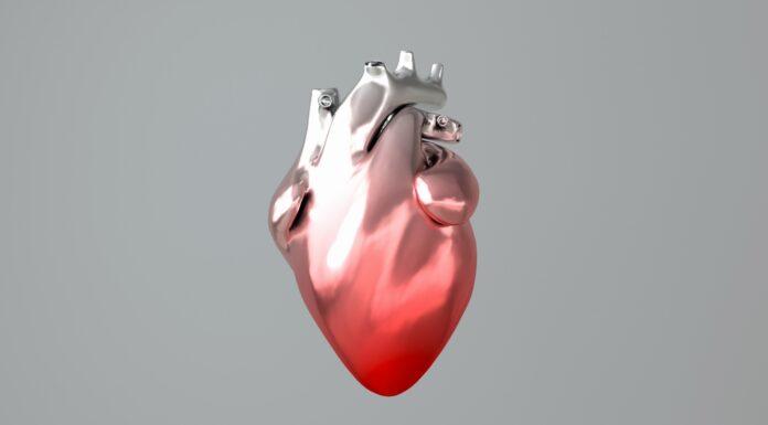 El corazón en 3D