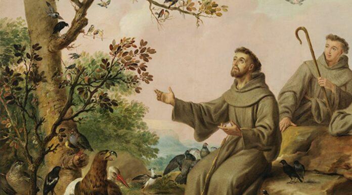 Quién fue San Francisco de Asís, Conoce la vida del santo
