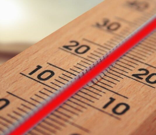 Quién inventó el termómetro, Una historia particular